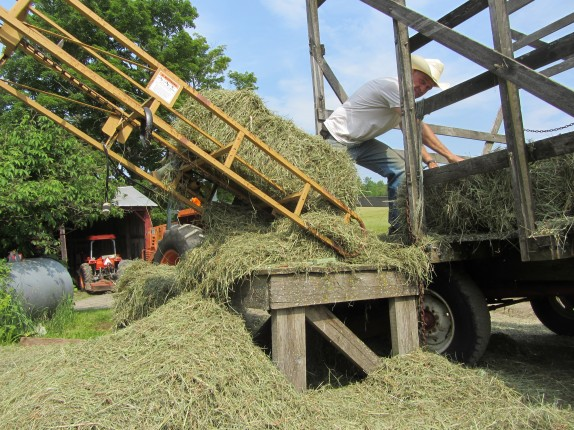loading the hay elevator - under orion farm